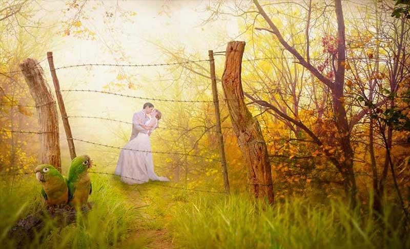 foto-romantica -(4)
